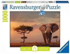 Rompecabezas Elefante de Masái Mara (1000 pzas.)