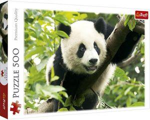 Rompecabezas Panda (500 pzas.)
