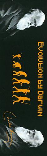 SEPARADOR DARWIN EVOLUTION