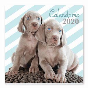 CALENDARIO CACHORRITOS 2020
