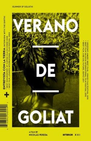 VERANO DE GOLIAT / DVD
