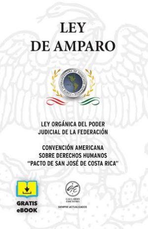 LEY DE AMPARO 2019 (BOLSILLO)