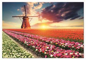 Rompecabezas Paisaje de tulipanes (1500 Piezas)