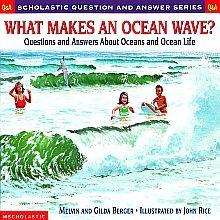 WHAT MAKES AN OCEAN WAVE