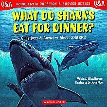 WHAT DO SHARKS EAT FOR DINNER