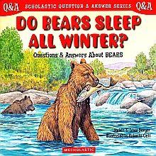 DO BEARS SLEEP ALL WINTER