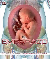 EMBARAZO, EL. GUIA ILUSTRADA DESDE LA CONCEPCION HASTA EL PARTO / PD. (INCLUYE CD.)