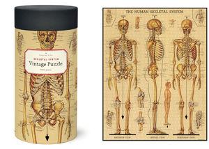 Rompecabezas Skeletal System (1000 pzas.)