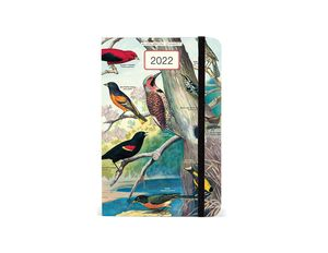 Agenda Audubon Birds 2022