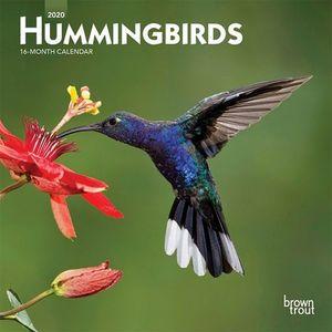 CALENDARIO HUMMINGBIRDS 2020 MINI