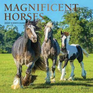 CALENDARIO HORSES 2020 SQR PLATO