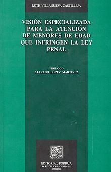 VISION ESPECIALIZADA PARA LA ATENCION DE MENORES DE EDAD