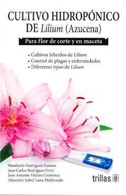 CULTIVO HIDROPONICO DE LILIUM (AZUCENA) PARA FLOR DE CORTE Y EN MACETA