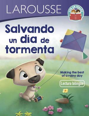 Salvando un día de tormenta / Making the best of a rainy day