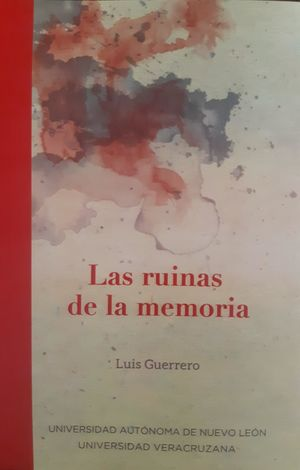 Las ruinas de la memoria