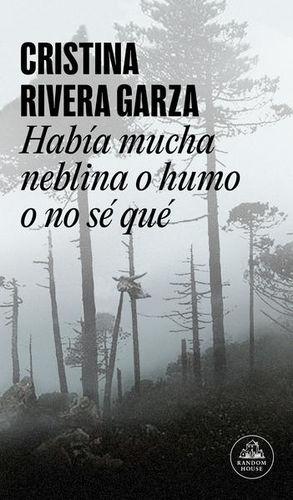 HABIA MUCHA NEBLINA O HUMO O NO SE QUE