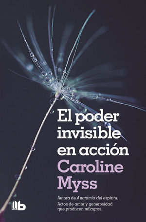 PODER INVISIBLE EN ACCION, EL