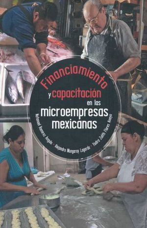FINANCIAMIENTO Y CAPACITACION EN LAS MICROEMPRESAS MEXICANAS