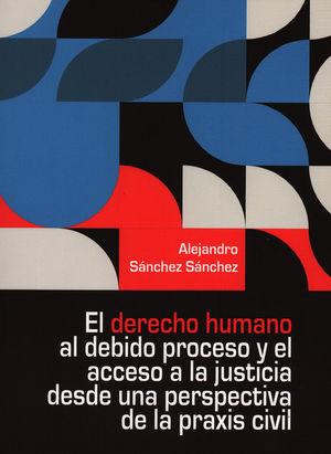 El derecho humano al debido proceso y el acceso a la justicia desde una perspectiva de la praxis civil