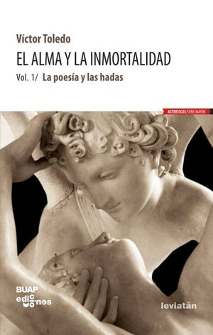 ALMA Y LA INMORTALIDAD, EL. LA POESIA Y LAS HADAS / VOL. 1 / 2 ED.