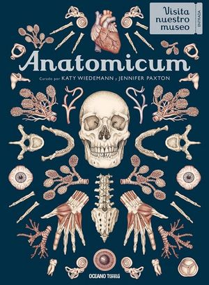 Anatomicum / pd.