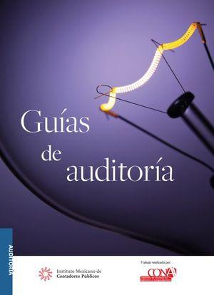 Guías de auditoría. Versión profesional