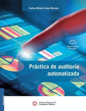 Práctica de auditoría automatizada / 14 ed.