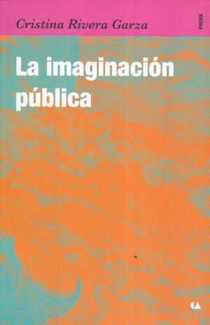 IMAGINACION PUBLICA, LA