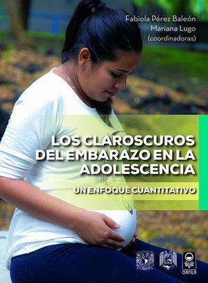 Los claroscuros del embarazo en la adolescencia. Un enfoque cuantitativo