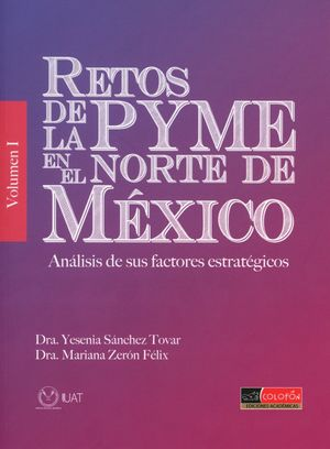 RETOS DE LA PYME EN EL NORTE DE MEXICO. ANALISIS DE SUS FACTORES ESTRATEGICOS / VOL. 1