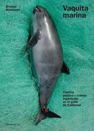 Vaquita marina, Ciencia, política y crimen organizado en el Golfo de California