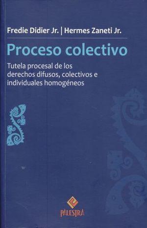 PROCESO COLECTIVO. TUTELA PROCESAL DE LOS DERECHOS DIFUSOS COLECTIVOS E INDIVIDUALES HOMOGENEOS / 13 ED.