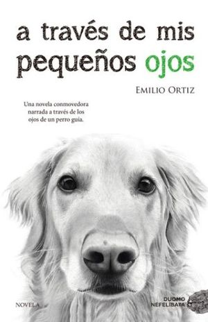 A TRAVES DE MIS PEQUEÑOS OJOS / 10 ED.
