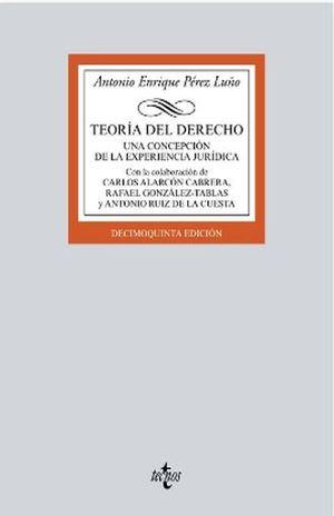 TEORIA DEL DERECHO. UNA CONCEPCION DE LA EXPERIENCIA JURIDICA