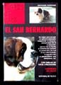 SAN BERNARDO, EL