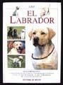 LABRADOR, EL / PD.