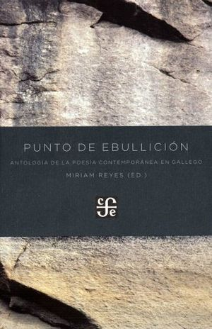 PUNTO DE EBULLICION. ANTOLOGIA DE LA POESIA CONTEMPORANEA EN GALLEGO