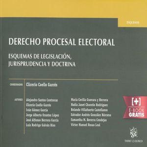 DERECHO PROCESAL ELECTORAL. ESQUEMAS DE LEGISLACION JURISPRUDENCIA Y DOCTRINA