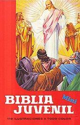 MINI BIBLIA JUVENIL. 110 ILUSTRACIONES A TODO COLOR / PD.