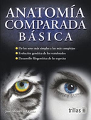 ANATOMIA COMPARADA BASICA