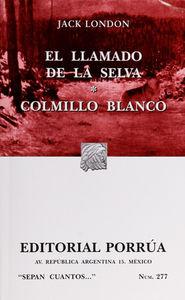 # 277. EL LLAMADO DE LA SELVA / COLMILLO  BLANCO